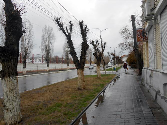 г. Камышин, ул.Октябрьская. Весенний дождь...